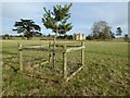 SO8844 : Young tree in Croome Park by Philip Halling