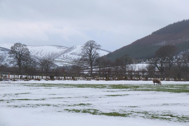 Snow thawing in fields at Haystoun