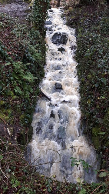 Plenty of Water between the Lakes, Trent Park