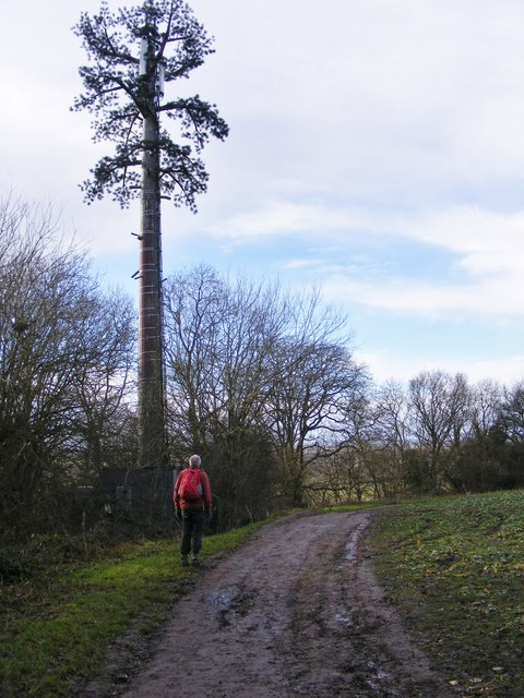 Wombourne Mast