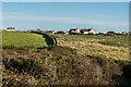 SW6912 : Towards Lizard village by Ian Capper