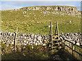 SD8964 : Ladder stile below Dean Moor Hill by Stephen Craven