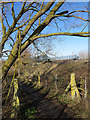 TL5478 : Path under the railway by John Sutton