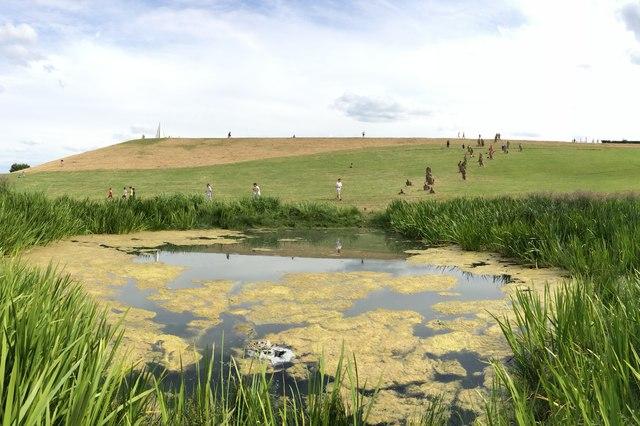 Campbell Park pond