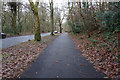 SK3282 : Whirlowdale Road,  Ecclesall Wood, Sheffield by Ian S