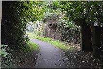 TQ2865 : Wandle Trail by N Chadwick
