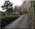 SN1107 : West along Parsonage Lane, Begelly by Jaggery