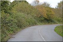 SX4061 : Bend in lane by N Chadwick