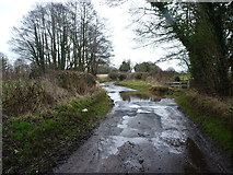 SJ8518 : Apeton ford on a wet afternoon by Richard Law