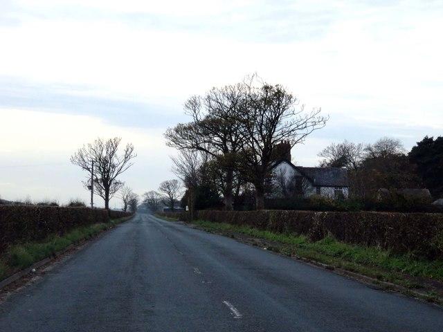 Mile Road heading to Singleton