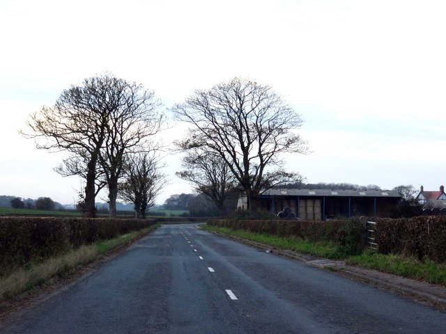 Mile Road heading to Singleton