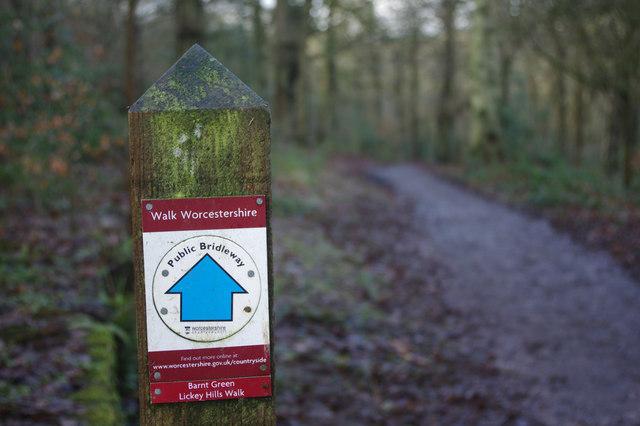 Walk Worcestershire through Pinfields Woods