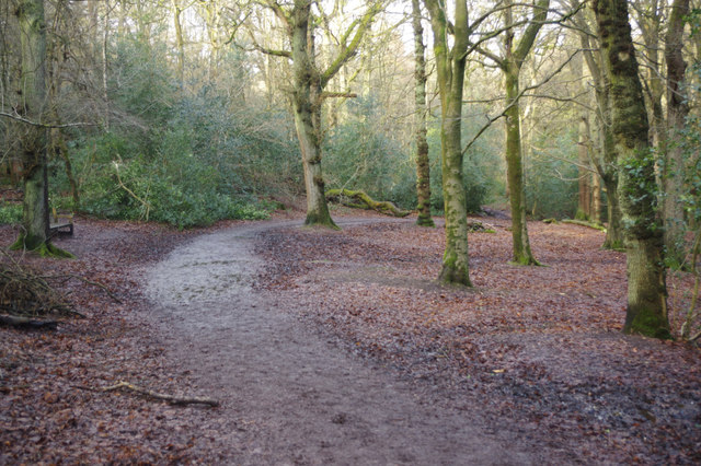 Bridleway through Lickey Hills Country Park