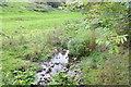NZ0615 : The Thorsgill Beck by Bob Harvey