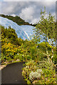 SX0454 : Path through the outdoor gardens, Eden Project by Ian Capper