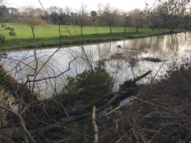 Debris in the River Avon, southeast Warwick