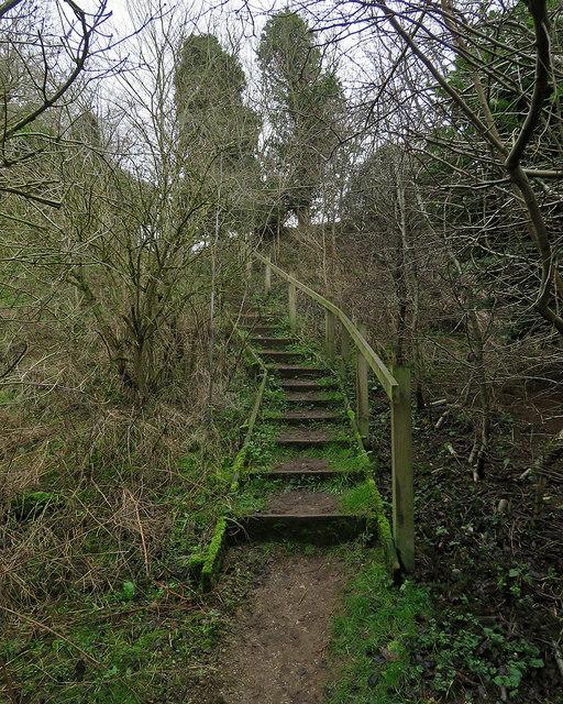 Newbourne: steps on a steep stretch of path