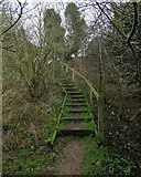 TM2743 : Newbourne: steps on a steep stretch of path by John Sutton