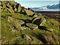 SK2583 : Abandoned millstones at the southern end of Stanage Edge by Neil Theasby