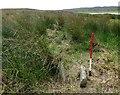 ND3144 : Battle Moss, Loch of Yarrows multiple stone rows by Sandy Gerrard