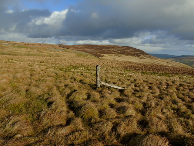 Lonely Fence Post on Middle Tongue