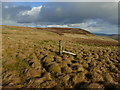 SD9495 : Lonely Fence Post on Middle Tongue by Chris Heaton