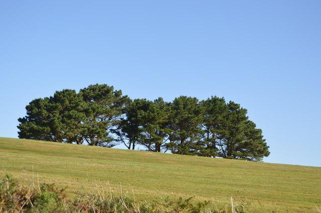 Carlyon Bay Golf Course
