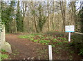 ST6568 : Entrance to the park from Dapps Hill by Neil Owen