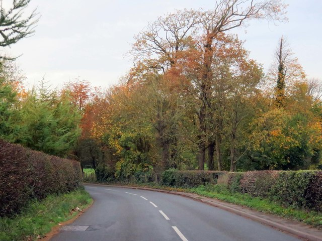 Lodge Lane heading to Little Singleton