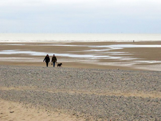 Dog walkers on the beach