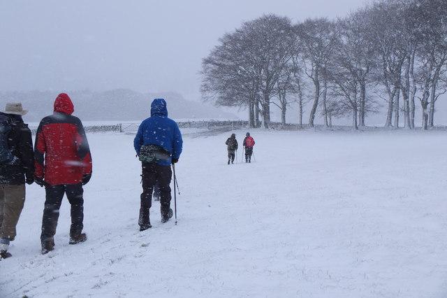 Winter walking, Eddleston (2)