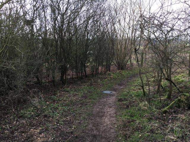Wychwood Way