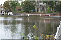 TQ2764 : Carshalton Lower Pond by N Chadwick