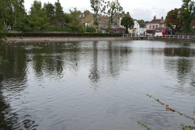 Carshalton Lower Pond