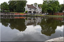 TQ2764 : Carshalton Upper Pond by N Chadwick