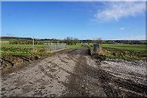 SE9914 : Bridge on Carr Lane, Bonby Carrs by Ian S