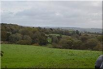 SX4161 : Cornish scenery by N Chadwick