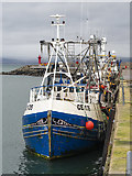 J5082 : Fishing boats, Bangor Harbour by Rossographer