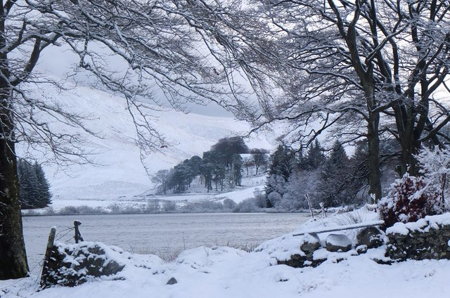 Winter trees, Portmore Loch