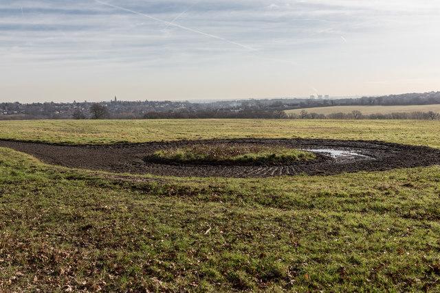 Farmland near Williams Wood, Trent Park