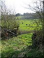 SJ2161 : Gateway in Ffordd Bryngwyn, Nercwys by John S Turner