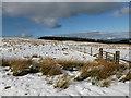 NS6283 : Fenceline by the Holehead track by Alan O'Dowd