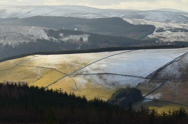 Sunlight on Kirklands Hill
