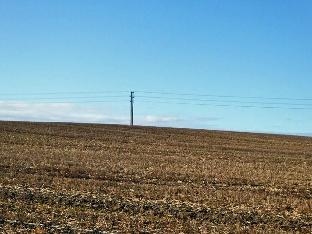 Power line across brown field