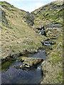 SN8058 : Nant Tadarn by Cwm Tywi in Powys by Roger  Kidd