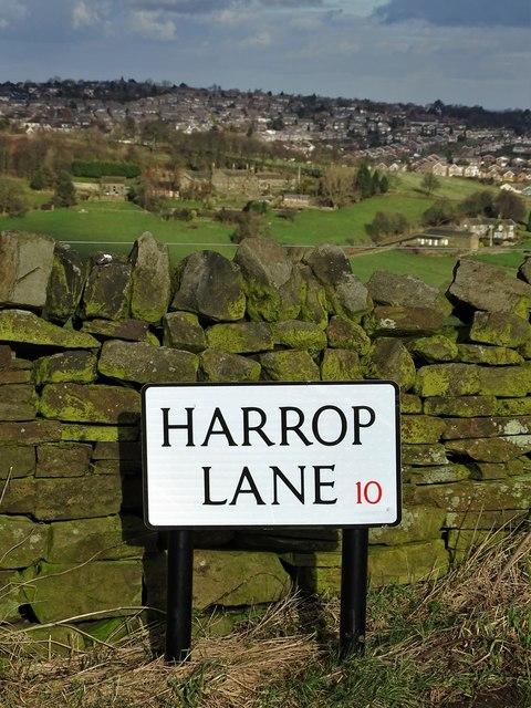 Harrop Lane, Sheffield 10