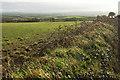 SW9776 : Field, Treglyn Farm by Derek Harper