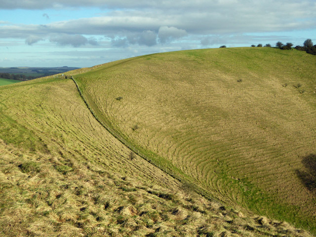 Down east of Knap Hill