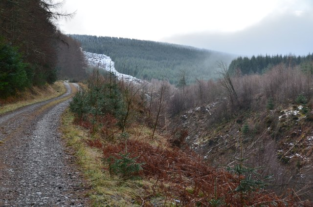 Track by the Plora Burn