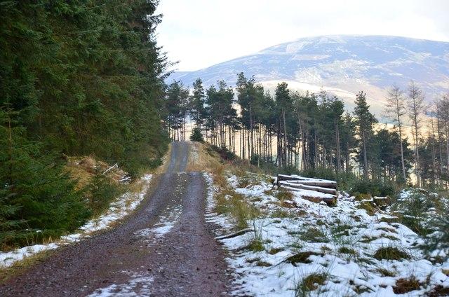 Straight track on Plora Craig